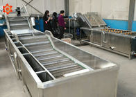 Industrial Vegetable Washing Equipment 800 Kg/H Capacity Save Water High Efficiency
