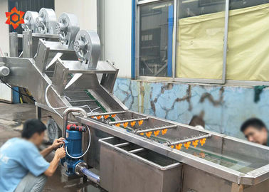 China 3 KW Power Vegetable Processor Machine Blueberry Washing Machine 800 Kg/H Capacity factory